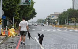 趁下午無風無雨,民眾收傘遛狗。(李怡欣/大紀元)