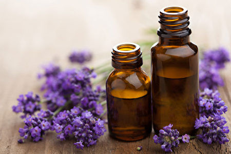 尤加利精油是天然的抗菌剂,同时有很好的穿透性及附着性。(Shutterstock)