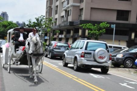 骏马拉车走在大马路上,很吸睛,也是要申请路权的。(赖月贵/大纪元)