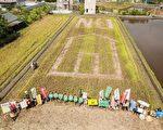 宜兰农地兴建房舍超限或违规使用情形严重,民团疾呼回归农用。(守护宜兰工作坊提供)