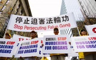 「7·20」十七週年 悉尼各界支持法輪功反迫害