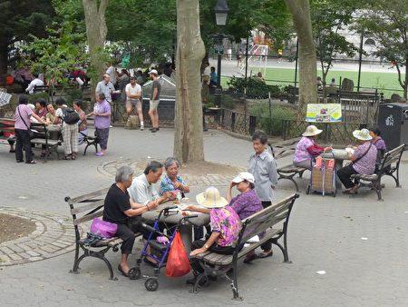 华埠独居老人的现象十分普遍,尤其是独居妇女多,随着年轻一代搬离华埠,老人大多选择独自在华埠生活。图为老人们在华埠哥伦布公园打牌。