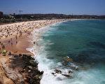 悉尼邦岱海滩。 (Don Arnold/Getty Images)