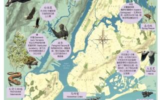 跟着图逛纽约市自然保护区
