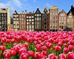 求职年期间 如何在荷兰创业