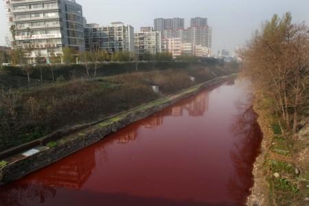 河南洛陽澗河水變紅成為中共環保無作為釀成惡果的典型案例。(Getty Images)