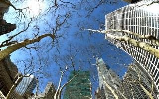 曼哈顿大楼(TIMOTHY A. CLARY/AFP/Getty Images)