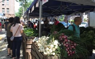 位於法拉盛凱辛娜大道楓葉球場(Maple Playground)的綠色市場,農家產品逢週三擺攤直銷。 (林丹/大紀元)