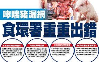 哮喘豬漏網 香港食環署重重出錯