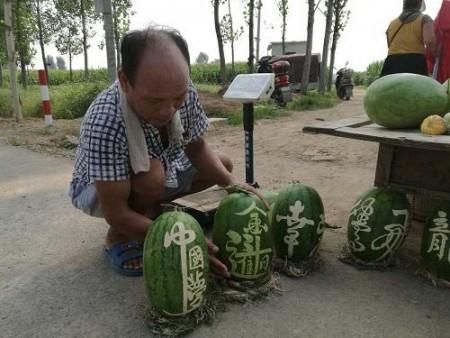 河南一农村教师无意间在自家出售的西瓜写字,打开销售西瓜的市场,同时也网红了一把。(网络图片)
