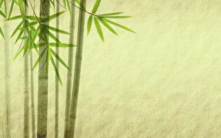 竹,風吹青肅肅。淩冬葉不凋,經春子不熟。虛心未能待國士,皮上何須生節目。(shutterstock)