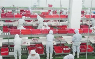 """近年来大陆各类食品安全事故频频发生,而中国体育总局早在多年前就已经为国家运动员提供""""特供食品""""。(网络图片)"""