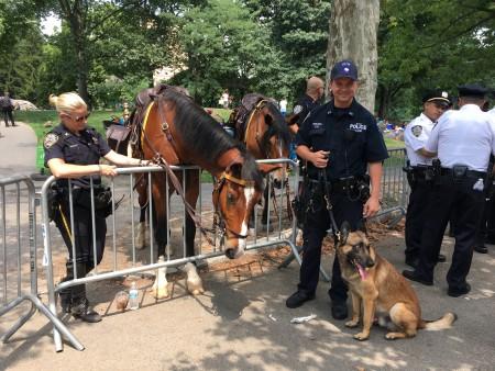 骑警、马儿和警犬到场助阵。