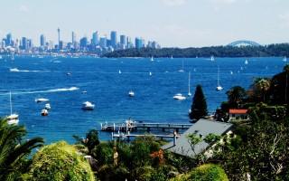 澳洲儲備銀行行長 資助子女在悉尼買房