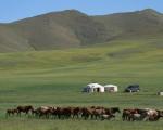 耶律楚材是蒙古国大臣。在他侍奉成吉思汗、窝阔台汗两朝近30年间,屡次为了维护国家和人民的利益,敢于犯颜直谏,置生死于度外。(Fotolia)