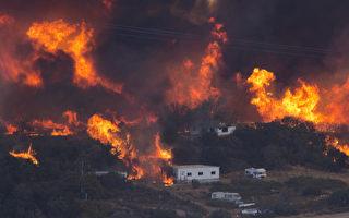 """美国加州南部的圣伯纳地诺县周二(8月16日)爆发了被称为""""蓝刻""""(Blue Cut)的森林大火。  ( David McNew/Getty Images)"""
