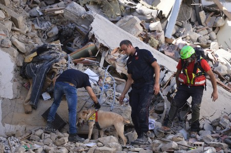 消防员和其他救援者在瓦砾中寻找生还者。 (MONTEFORTE/AFP/Getty Images)