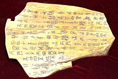 将在中国节期间展出、由牛骨制成的甲骨文复制品。它是从中国河南安阳殷墟博物馆珍贵的收藏品中复制的。(良克霖/大纪元)
