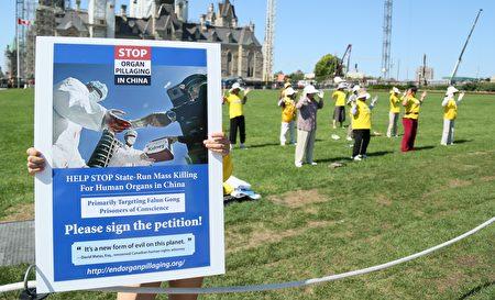 炼功及真相展板。8月26日法轮功在加拿大首都渥太华国会山,呼吁即将访华的加拿大总理敦促习近平政府帮助停止迫害。(任乔生/大纪元)