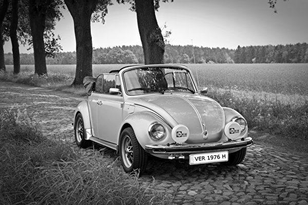 德国大众的甲壳虫轿车(pixabay)