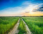 走好自己的一程,善待生命中的每个人,凡事无愧于心,也就够了。(fotolia)