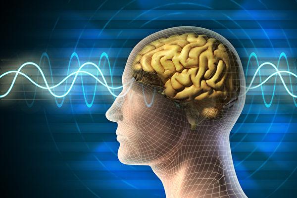 神經學家:你的思想能改變現實環...