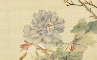 清 李培雨〈牡丹〉。(公有领域)