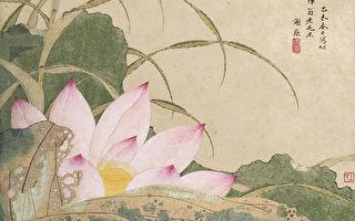 蓮花入世又超凡 連繫佛國仙家境界