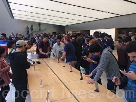 9月16日,苹果手机iPhone 7正式在美国开卖引发购机热潮,但几个月后的今天,市场传出iPhone 7滞销的消息,还可能会让苹果在明年初减产10%。(林骁然/大纪元)