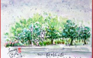 淡彩速寫 / 公園廣場的路樹(圖片來源:作者 邱榮蓉 提供)