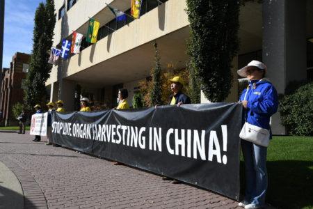 汽车之旅志愿者在红鹿市市政厅前和平抗议中共强摘器官,呼吁制止迫害法轮功。(童宇/大纪元)