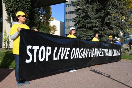 汽车之旅志愿者在红鹿市市政厅前和平抗议中共强摘器官,呼吁制止迫害法轮功。(吴伟林/大纪元)