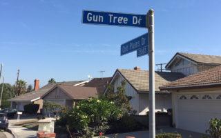 洛杉磯哈崗劫案連發 華人成目標