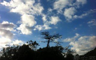 日本伊势湾的白云蓝天。(摄影:李云飞)