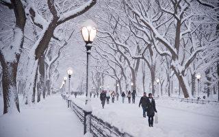 紐約中央公園的燈柱除了照明功能之外,其暗藏的數字密碼也可以標示其位置所在。(戴兵/大紀元)