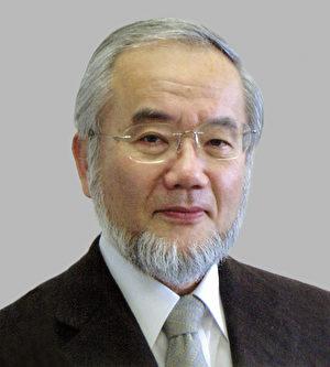 2016年诺贝尔医学奖由日本科家家大隅良典(Yoshinori Ohsumi)一人获得。(AFP PHOTO)
