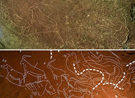 在西班牙北部小鎮雷凱蒂奧(Lekeitio),考古學家發現了50多幅石洞壁畫,估計距今有1.45萬年的歷史。(AFP PHOTO / DIPUTACION FORAL DE BIZKAIA)