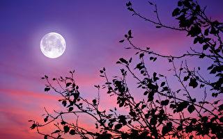 今月:千古明月今更亮