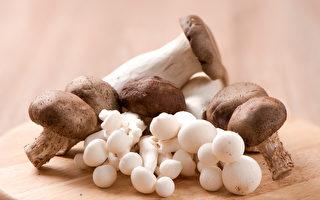最新研究表明,多吃蘑菇可以帮助预防痴呆。(shutterstock)