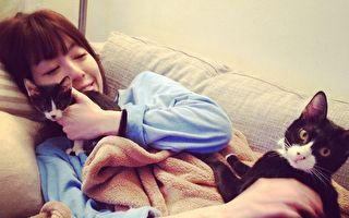 要一起幸福哟!台女花24万带六猫陪嫁日本