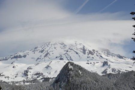美国华盛顿州雷尼尔雪山风光。(摄影:李云飞)