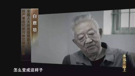 全国人大环资委原副主任、云南省委原书记白恩培。(截图)