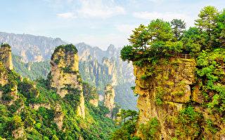 张家界国家森林公园。(fotolia)
