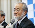 日本分子细胞生物学家大隅良典(Yoshinori Ohsumi)因发现自体吞噬(autophagy)的机制而获得今年的诺贝尔医学奖。 (Ken Ishii/Getty Images)