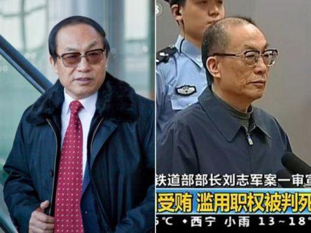 原铁道部部长刘志军前后对比。(截图)