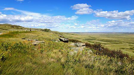 大草原上一望无际的旷野。