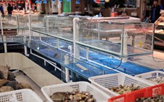 近日,活鱼在北京超市里被全部下架,又上架销售,引发社会关注。(网络图片)