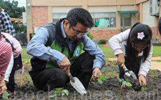 食农教育从小开始 小小开心农场种菜去