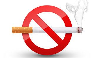 研究人员发现,吸烟除了可能对肺部造成伤害之外,也会影响免疫系统。这或许是人们应该戒烟的另一个理由。(Fotolia)