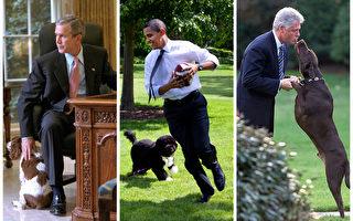 美国前任总统小布什、克林顿和现任总统奥巴马(中)在白宫与爱犬一起。(Getty Images/大纪元合成)